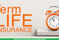 What Does Term Life Insurance Cover?[Complete Guide]