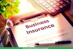 What is Business Insurance and features to know