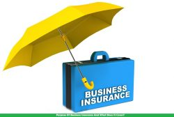 Purpose Of Business Insurance And What Does It Cover?