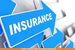 Complete Guide to 8 Types of Insurance Organizations